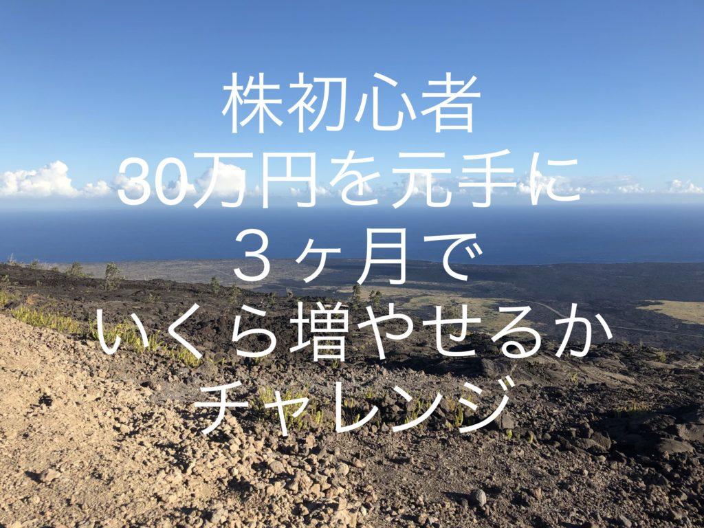 株初心者が「30万円を元手に3ヶ月でいくら増やせるかチャレンジ」をスタートします。