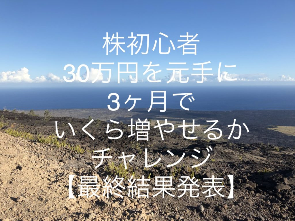 株初心者が「30万円を元手に3ヶ月でいくら増やせるかチャレンジ」終了!運用実績報告