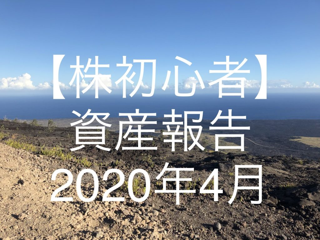 【株初心者】資産報告|2020年4 月