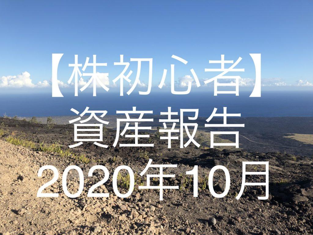 副業追加しました。【株初心者】資産報告|2020年10月