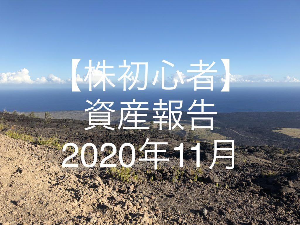 【株初心者】資産報告|2020年11月